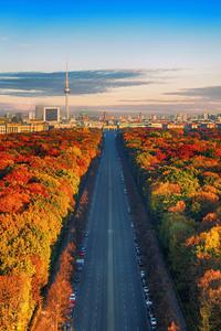 Highway through Autumn Forest