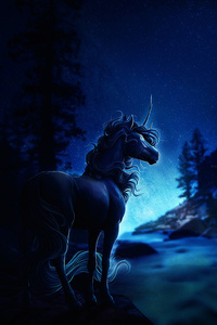 Horse Blue Night