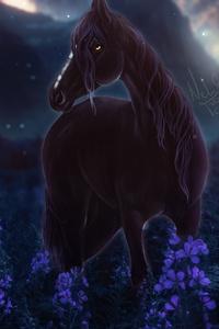 1440x2560 Horse Meadow Night Flowers 4k