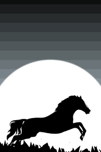 2160x3840 Horse Minimal 4k