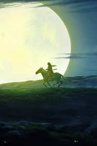 800x1280 Horse Rider 4k