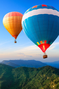 1440x2560 Hot Air Balloon 4k