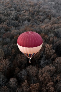 1080x1920 Hot Air Balloons Aerial View Forest
