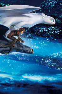 1080x2280 How To Train Your Dragon The Hidden World Imax