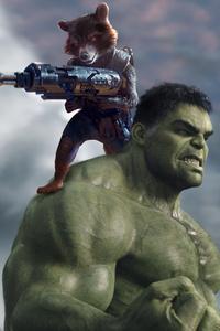 Hulk And Rocket Raccoon