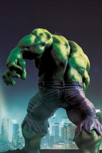 1440x2560 Hulk Art HD