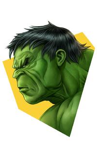 Hulk Simple Minimalism