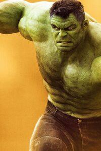 Hulk Superhero