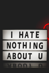 480x854 I Hate Nothing About You
