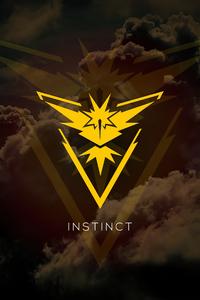 480x854 Instinct Pokemon Go 5k