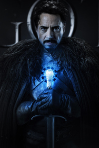 1080x2280 Iron Man Game Of Thrones
