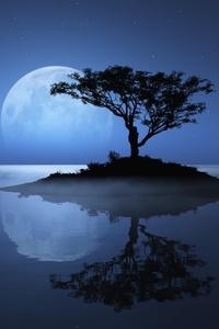 Island Sky Moon Tree