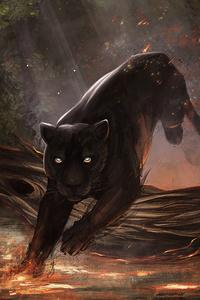 320x480 Jaguar Black Cat