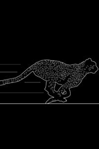 Jaguar Minimalism