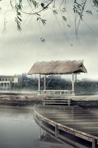 Japan Rain Fall
