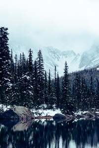 750x1334 Jasper National Park Alberta Canada 5k