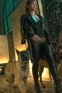 320x568 John Wick Chapter 3 Still 5k