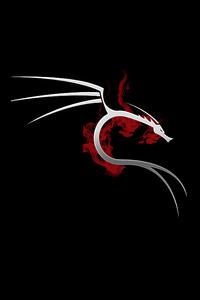 800x1280 Kali Linux 4k
