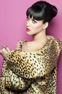 Katy Perry 4k New