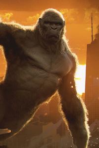 640x960 King Kong