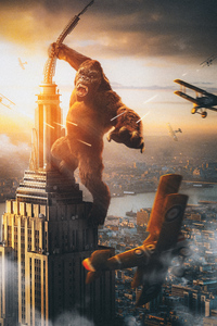 320x568 King Kong Vs Plane