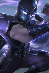 2160x3840 Knight Warrior