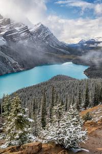 480x800 Lake Alberta Scenery 5k
