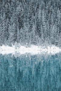 1080x2160 Lake Louise Canada 5k