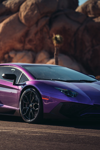 Lamborghini Aventador LP 750 SV