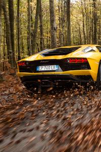 Lamborghini Aventador S 4k Rear