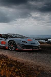 Lamborghini Aventador SVJ 63 Roadster 5k
