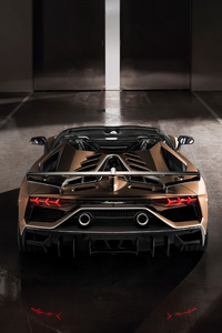 Lamborghini Aventador SVJ Roadster 2019 Rear
