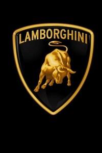 1080x2280 Lamborghini Car Logo