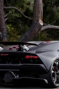 Lamborghini Custom Job