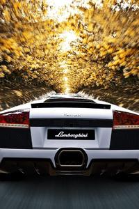 Lamborghini Murcielago Superveloce Rear Motion Blur