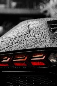 320x568 Lamborghini Tail Light