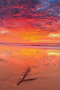 Landscape Beach Tropical