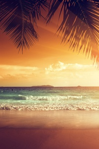 Landscape Beach Tropical Sun