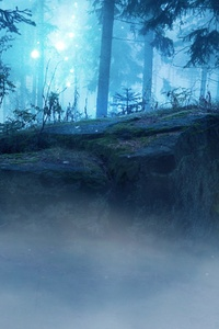 480x854 Landscape Forest Dark Evening