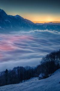 Landscape Mist Snow Mountains Trees 4k