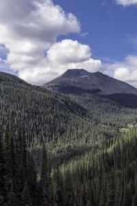 Landscape Valley Forest 4k
