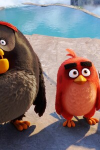1280x2120 Latest Angry Birds 2016 Movie