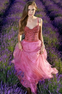 480x800 Lavender Field Girl Dress Cute 4k