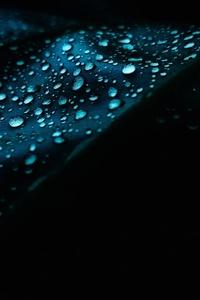 Leaf Dew Drops Droplet 4k