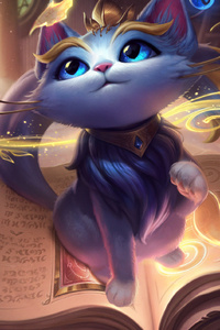 League Of Legends Cat