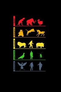 320x480 Life Evolution Minimalism