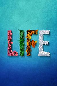 1080x2160 Life Typography 8k