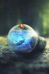 Light Bulb Nature Forest Ants Photoshop