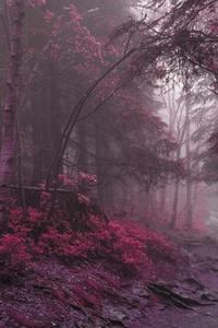 Lilac Grass Tress 4k