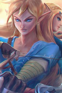480x854 Link And Zelda Princess